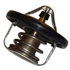 Válvula termostática Grand Livina March Sentra Tiida Versa